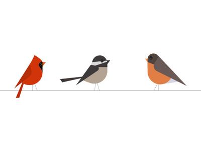 birds christmas cardinal chickadee robin bird birds