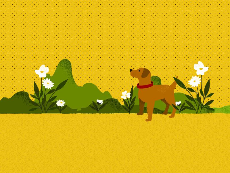 who's a good boy flowers garden puppy ouside summer retro flower dog