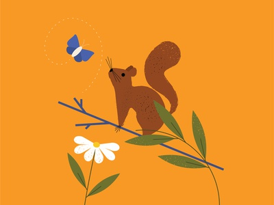 squirrel minimalist forest leaves animals spring butterfly branch squirrel flower