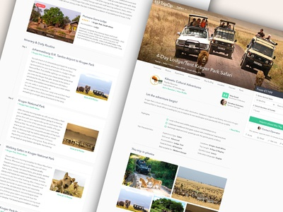 🦁 Detailed Travel Offer Page  travel offer website ui layout icons gallery timeline clean