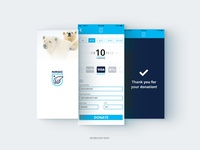 Credit Card Checkout - 002