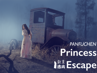 Princess Escape branding design princess poster design poster a day poster 365 daily challenge 365 days poster 365 photoshop