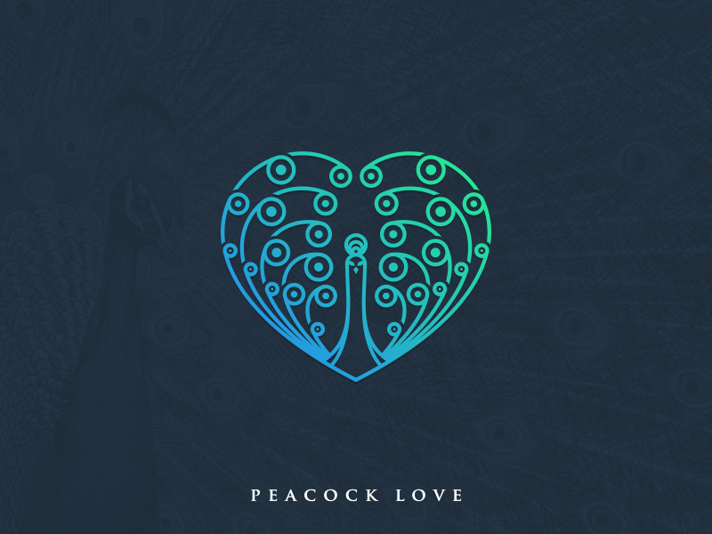 Peacock Love love peacock logo letter head illustrator graphic design creative coreldraw business card brand identity artwork abstract