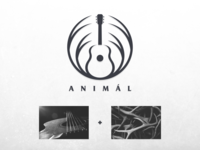 Antlers + Guitar