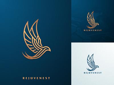 swallow company business artismstudio icon brand identity creative artwork vector design graphic design identity branding luxury branding logo luxury grid monoline lineart bird swallow