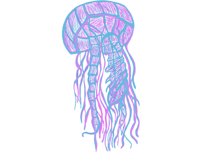 Jellyfish Illustration Experiment (Hand Drawing) bright colors stylized minimal animal immersive procreate app branding logo jellyfish hand drawing hand crafted concept creative illustration
