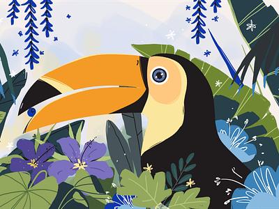 Toucan handdrawn animal eye bird toucan nature leaves advertising animation illustration