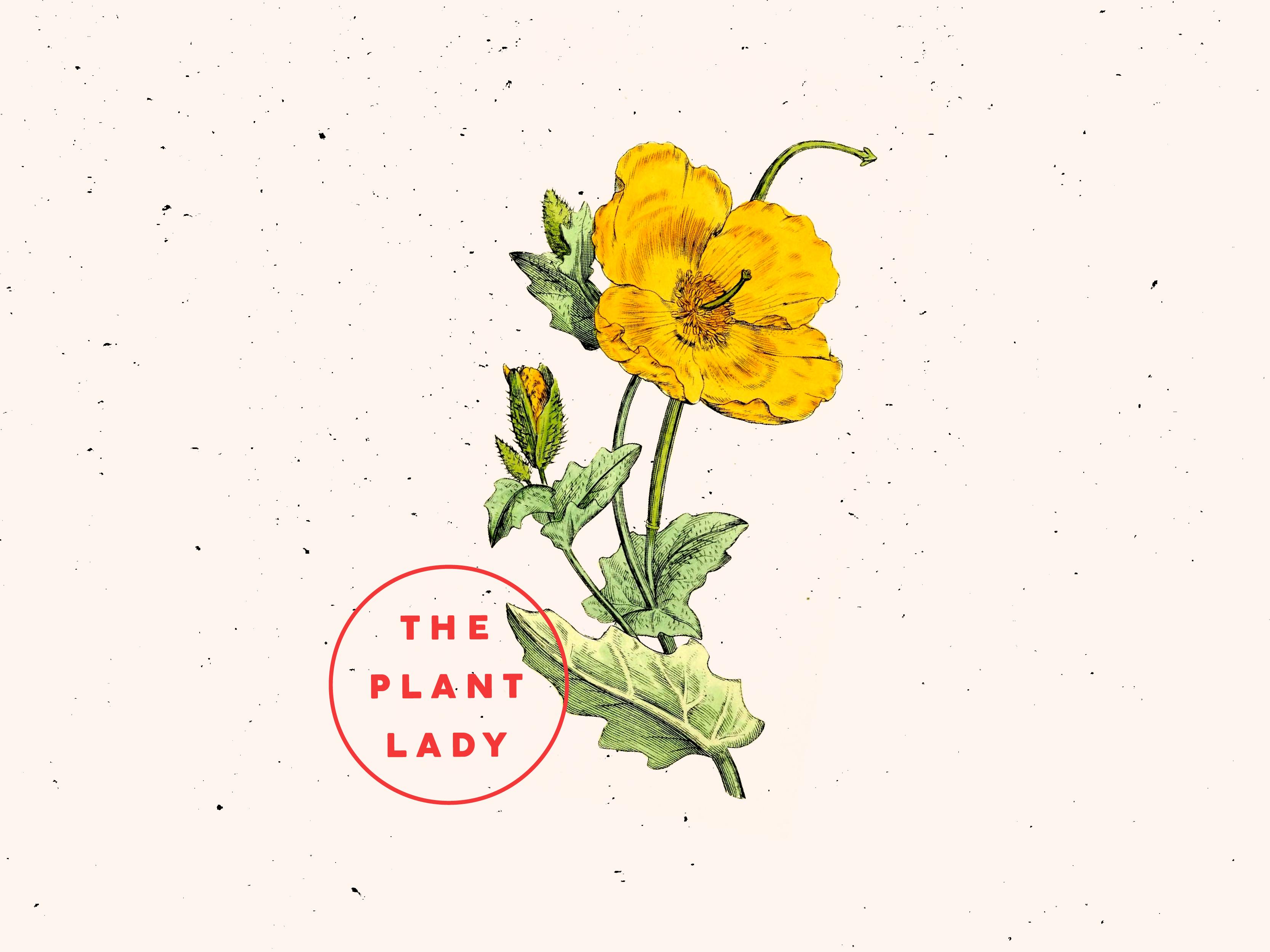 Plant lady dribbble 06