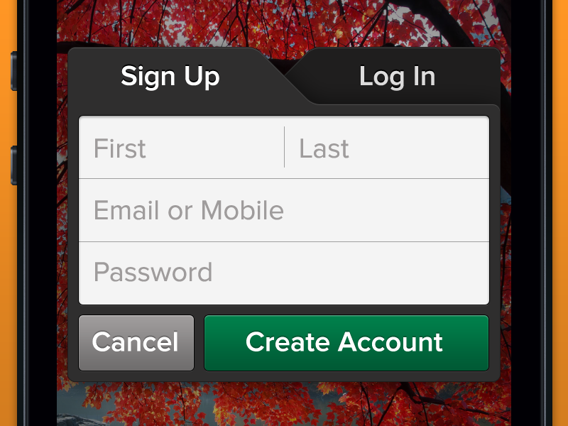 Sign Up / Log In modal for iOS app ios ux ui signup login