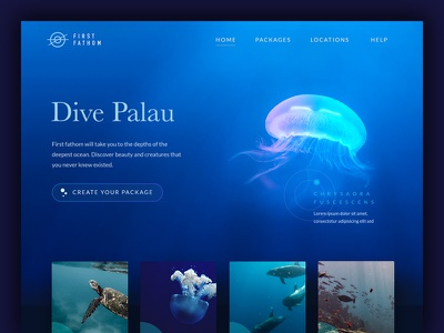 First Fathom Diving School web ux ui diving navigation menu logo icons icon grid digital design