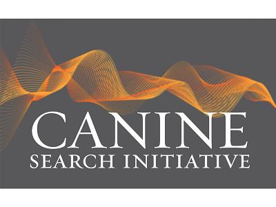 CSI branding logo graphic design