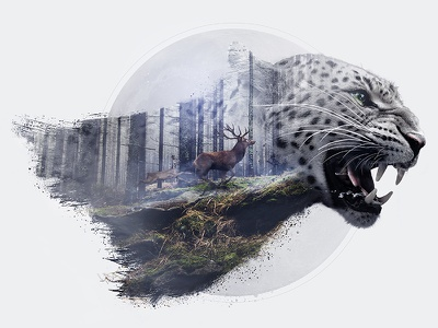 Leopard Double Exposure art direction retouch lightroom photoshop forest leopard double exposure