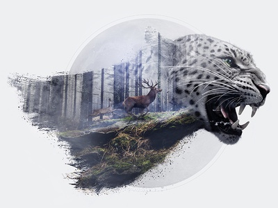 Leopard Double Exposure art direction retouch lightroom photoshop forest leopard double exposure