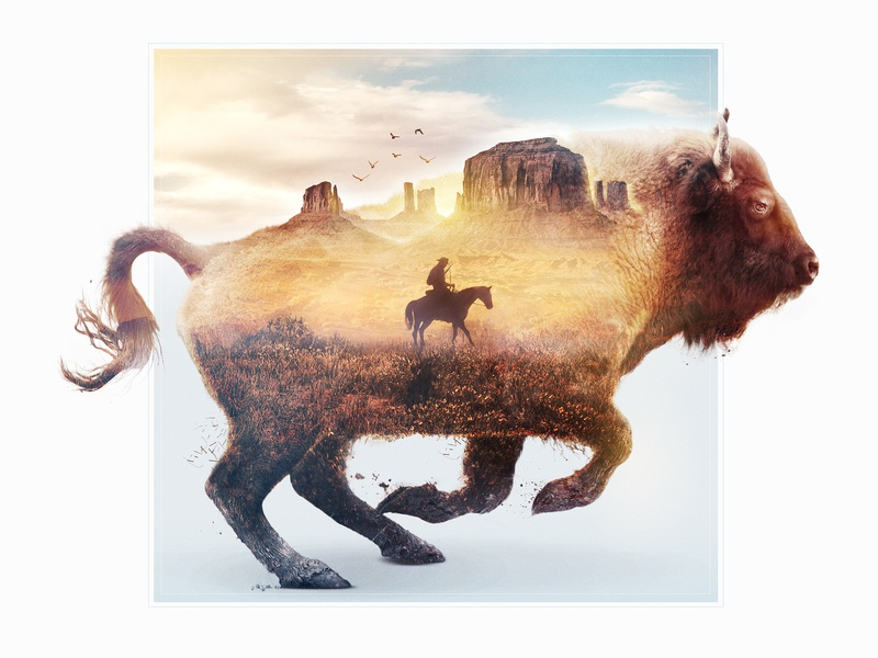 Bison Double Exposure blue yellow design 2d canyon western lightroom hunt animals bison photoshop retouch double exposure