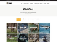 Fresno Chaffee Zoo - Species Overview Page