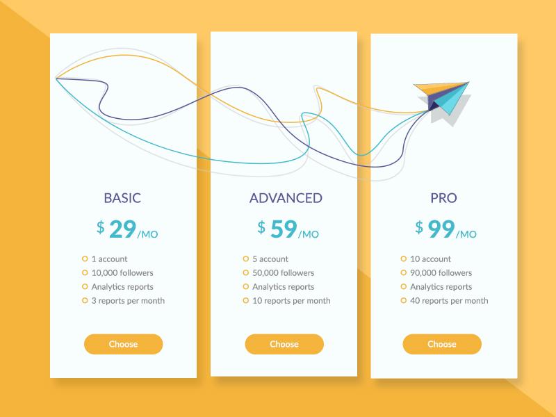Pricing Plan yellow plane pro advanced basic website pricing