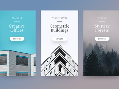 Articles woods forest photos buildings architecture ux ui modern clean