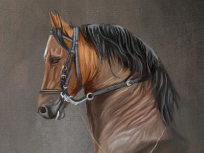 Digital Painting on iPad pro animal procreate oil painting digital painting art illustration