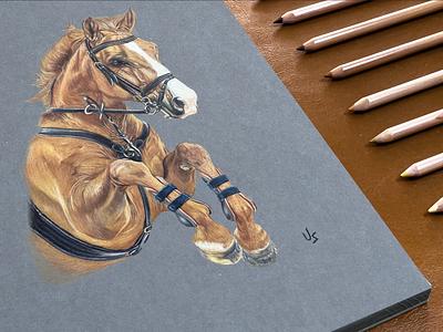 Sketch on pastelmat paint animal sketching pencil drawing paper creative sketch art