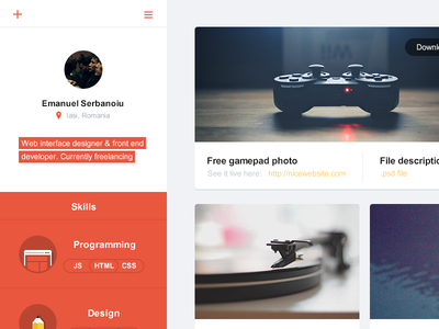 Flat portfolio interface