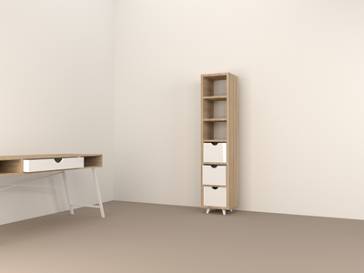 Tall Cabinet (10/10) model render 3d blender