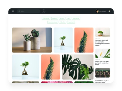 Plants website - desktop version figmadesign webflow figma website blog favorites bonsai plant grid desktop design daily ui minimalist minimalism ui designer ui ux elvas graphic designer aveiro freelancer