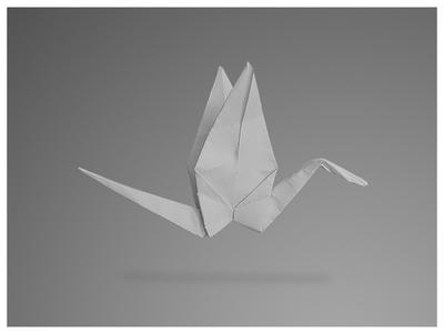 Origami Print for VKNagrani New York