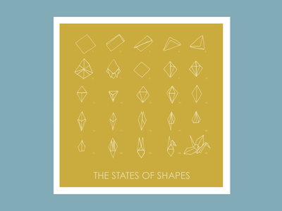 The States of Shapes