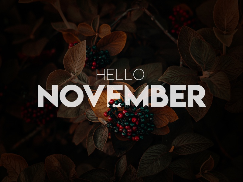Hello November 2018 illustrator photoshop light and bold basic sans serif calm cozy warm 2018 november hello dh designs autumn typography manipulation photography concept design graphic