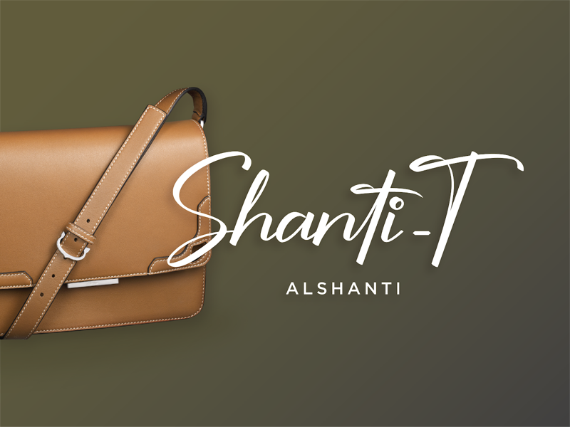 Shanti-T logo design fashion branding concept calligraphy logo graphic design bag