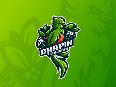 Chapin Strength sport illustration e-sport esport 3d graphic design branding motion graphics animation mascot character brand bodybuilder logo fitness gym