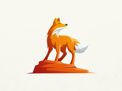 Fox Standing On A Rock