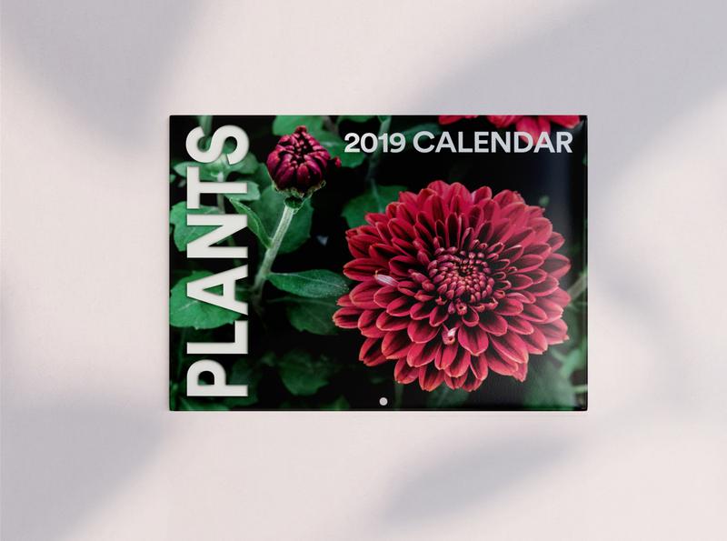 Plant Wall Calendar wall calendar plants flowers photography graphic design calendar design calendar