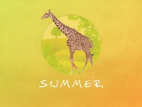 Summer - Giraffe