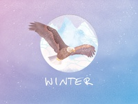 Winter - eagle