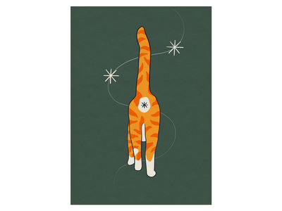 asshole cat personality animal art animals asshole ass procreate ginger cat cat illustration