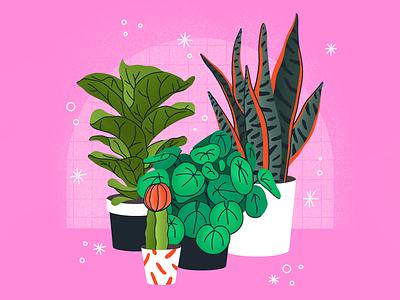 studio plants green botanical plants illustrator limited palette limited colour palette flat illustration procreate illustration