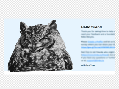 Hello Friend owls