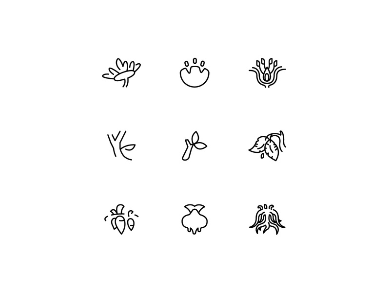 Bloom, Stem, & Root Logo Exploration exploration environment agriculture root stem bloom icon logo