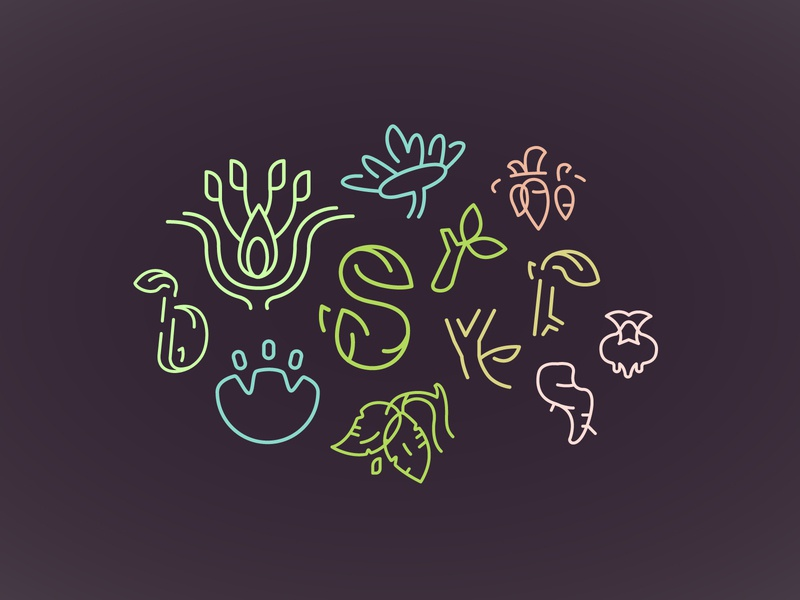 Blooms, Stems, & Roots Icons & Logomarks organic logomark lettermark lettering agriculture logo agricultural environmental vegetable logo vegetables roots leaves branches stems petals flower illustration flowers blooms