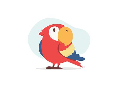 Parrot zoo parrot illustration