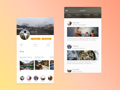 Traveller Blog App network profile clean application travel travelling ux ui design ios app