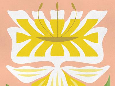 Daffodil daffodil flowers botanic illustration flower