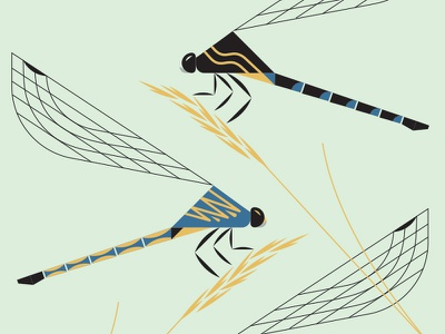 Dragonflies illustration geometric insect dragonfly