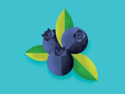 Blueberries blueberries shading geometric illustration fruit