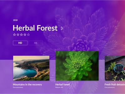 TV Interface / Nature