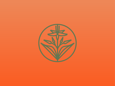 Flower icon flower logotypedesign logotype logo