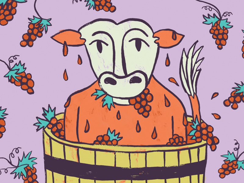 Crazy Cow #3 wine funny texture hand drawn ink cow illustration
