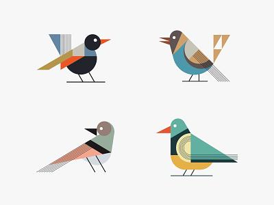 Colorful birds bird flat colorful simple illustration modern animal