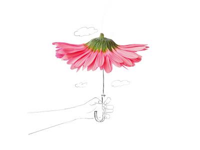 Flower Umbrella illustration line art drawing flower